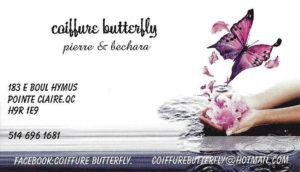 butterfly-1022x587